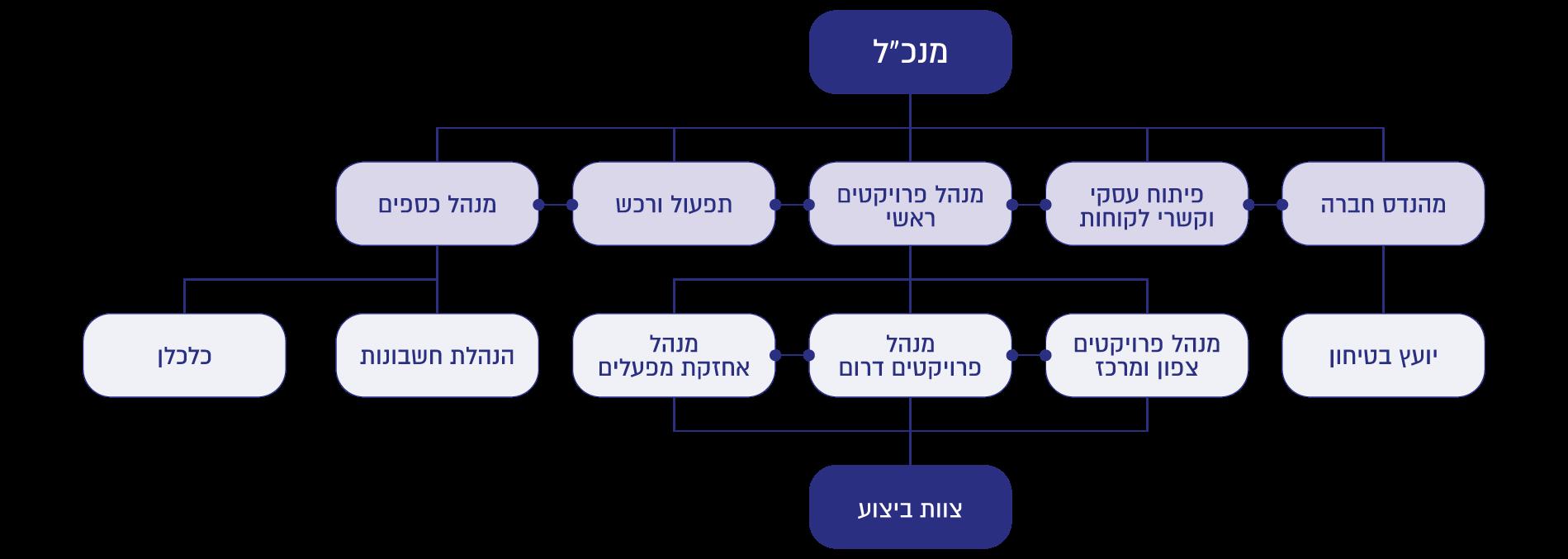 מבנה ארגנוי